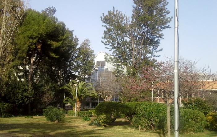 natalia piernas historia de empresa isla philips jardines